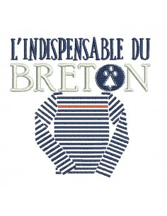 Instant download machine embroidery  Breton wink