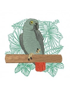 embroidery design gray parrot of Gabon