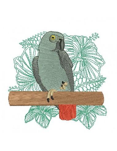 Motif de broderie  machine perroquet gris du Gabon