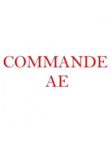 Motif de broderie  Commande AE