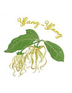 Motif de broderie machine fleur ylang ylang