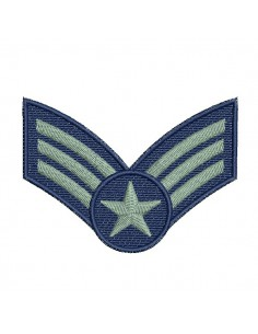 Instant download machine embroidery  design air force badge