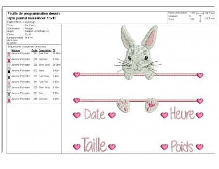 Motif de broderie machine lapine  journal de naissance