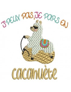 Embroidery design text I can not pony