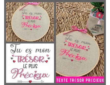 machine embroidery design precious treasure text