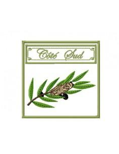 Motif de broderie machine Côté sud cigale sur branche d'olivier 10x10 cm