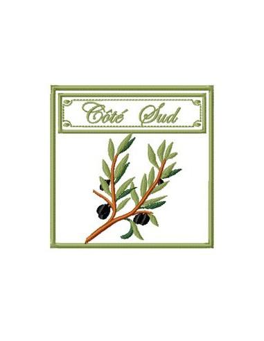 Côté sud branche d'olivier 10x10 cm